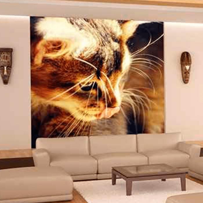 Simulacion fotomural gato