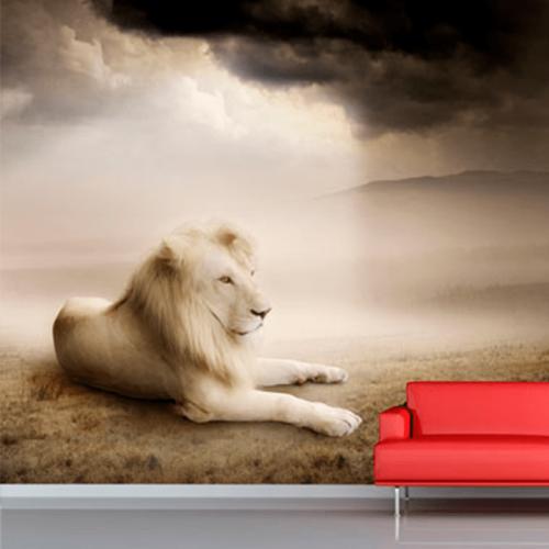 Simulacion fotomural leon