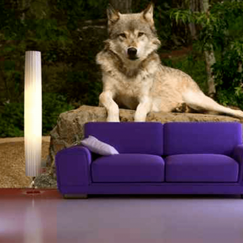 Simulacion mural lobo