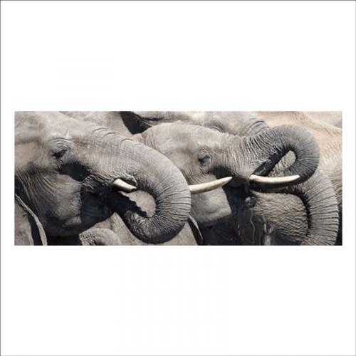 mural para cabecero de cama elefantes