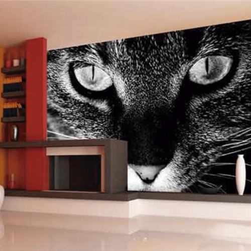 Simulacion mural mirada de gato