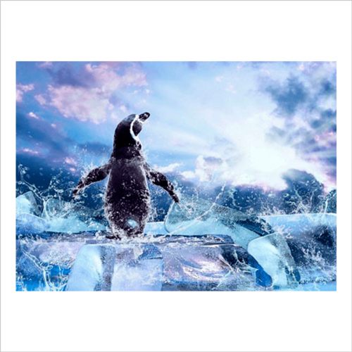 mural papel pintado pingüino