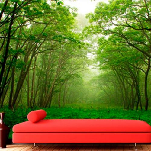 Simulacion colocación fotomural bosque