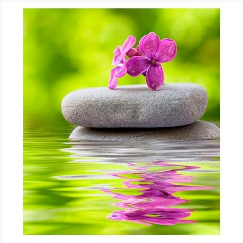 paisajes zen flor en equilibrio