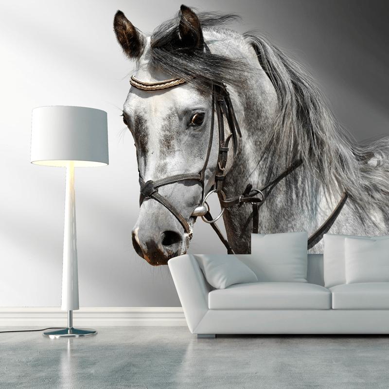 Simulación mural caballo arabe
