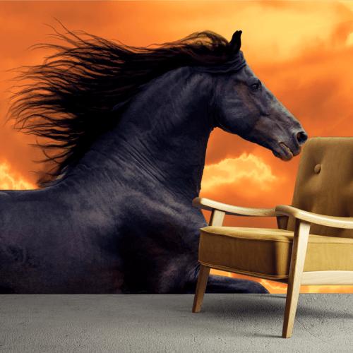 Simulación mural caballo negro