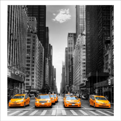 vinilo new york