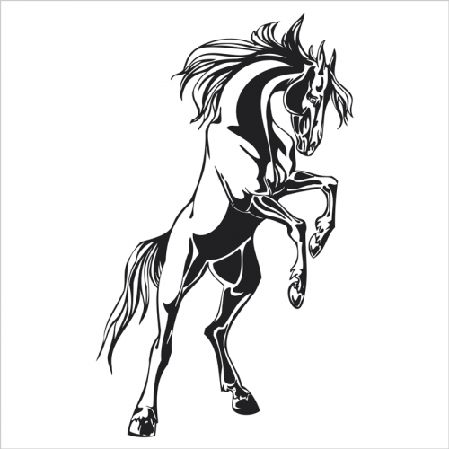 vinilos decorativos animales, caballo