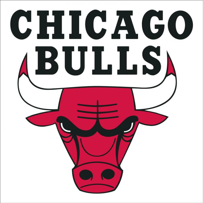vinilo baloncesto escudo chicago bulls